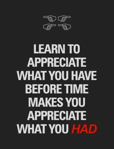 quote-about-learn-to-appreciate-what-you-have